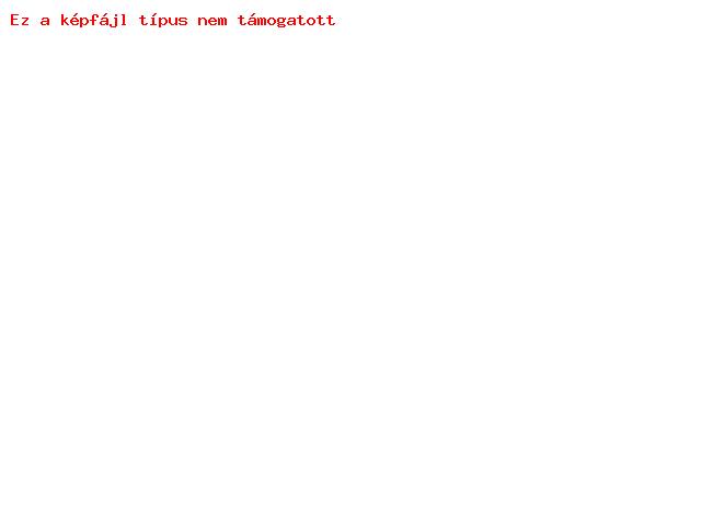 DECO SLIM univerzális bőrtok - Samsung S5230 - kék