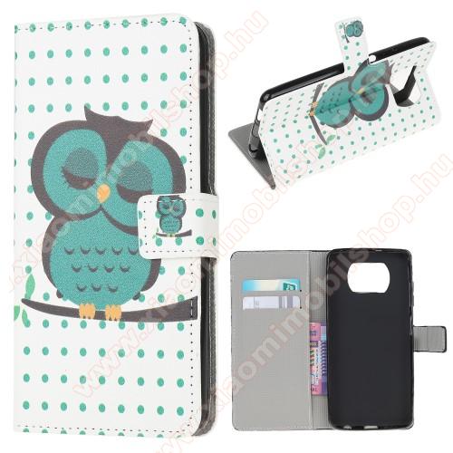 Notesz / mappa tok - ALVÓ BAGOLY MINTÁS - oldalra nyíló, rejtett mágneses záródás, bankkártyatartó zseb, asztali tartó funkció, szilikon belső - Xiaomi Poco X3 / Poco X3 NFC